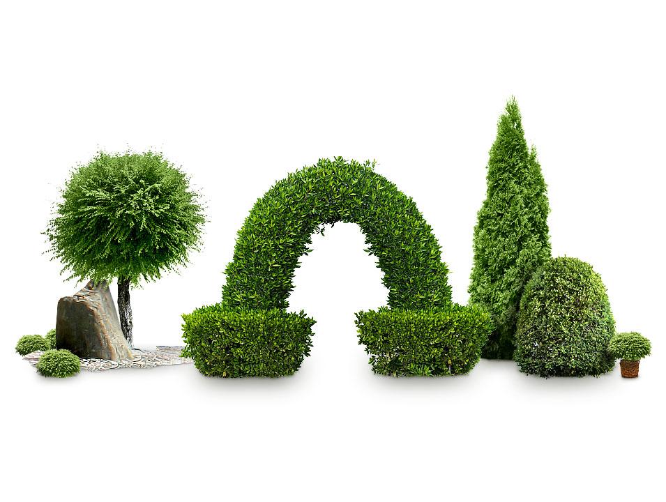 Ландшафтные формы для благоустройства участка, двора и придомовой территории.