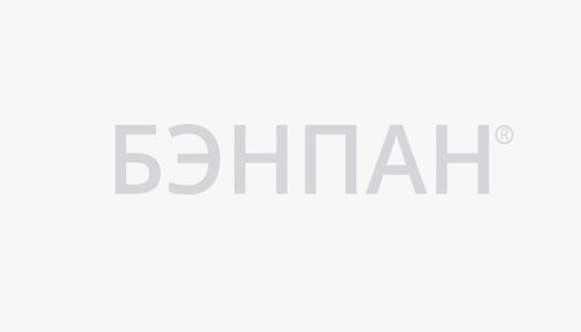 Логотип бэнпан серый