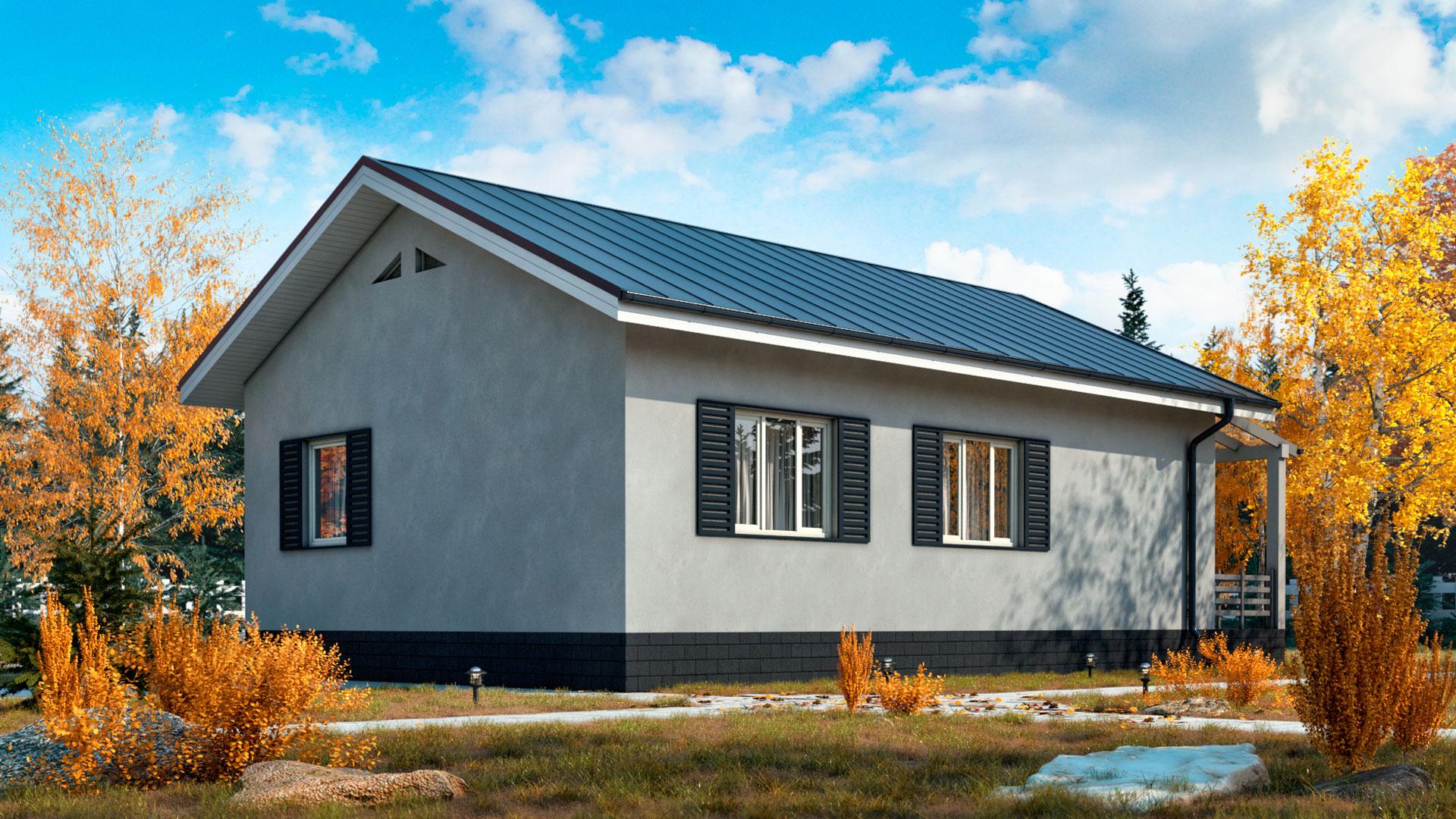 Боковой и задний фасады одноэтажного дома 8 на 10, проект БП-86.