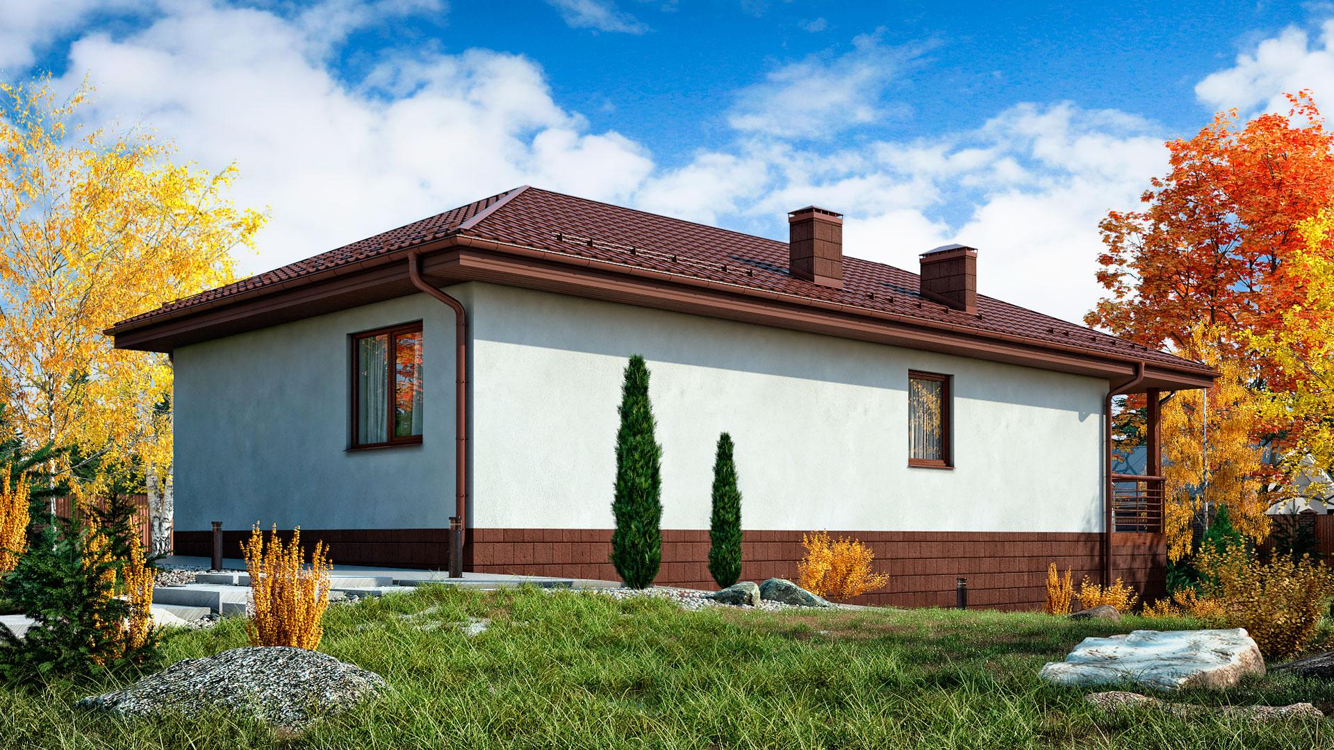 Задний и боковой фасады дома 13 на 7 одноэтажного, проект БЭНПАН БП-94.